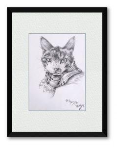 まつやまさん「守護猫」(B5)我家の守護猫。よく寝ているので、記念に描いてみました。