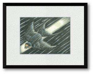松田定幸さん「 流星 ― Swallow ー 」(B5)星の擬人化ならぬ擬獣化作品です。流れ星の軌跡を効果線(スピード線)と燕の軽やかさとで表現しました。