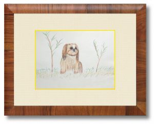 yatsuさん「愛犬」(B5)9年前に亡くした我家の愛犬(雄のシーズー)。コロナ自粛の日々に彼がそばに居てくれたらと想いながら描きました。