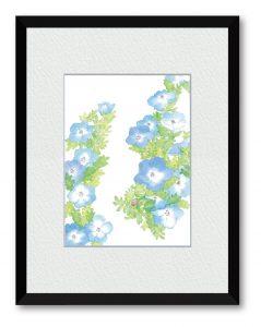 はやしふみえさん「小さな想い」(B5)可憐で成功という花言葉のネモフィラを描きました。