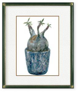 牧野優さん「鎮座」(F4)どっしりと構えた塊根植物。充ち溢れる生命感やその奇抜な姿から日々癒され元気をもらっています。